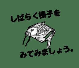 Kino-ko02 sticker #1026796
