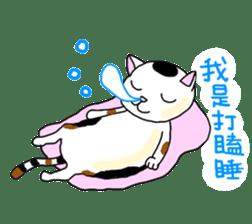 Asian Cat sticker #1031849