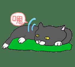 Asian Cat sticker #1031859