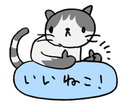 CAT CAN TELL sticker #1046531