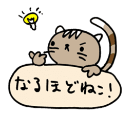 CAT CAN TELL sticker #1046548