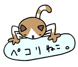 CAT CAN TELL sticker #1046549