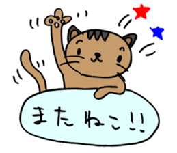 CAT CAN TELL sticker #1046550