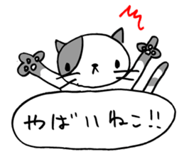 CAT CAN TELL sticker #1046552