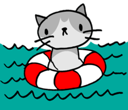 CAT CAN TELL sticker #1046559