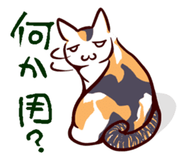 Tortoiseshell cat MII sticker #1062684