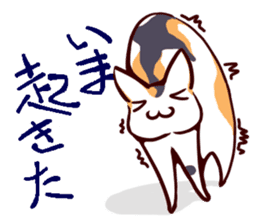 Tortoiseshell cat MII sticker #1062705