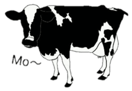 The cows sticker #1074429