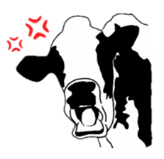 The cows sticker #1074432