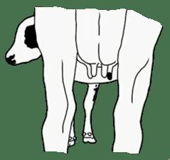 The cows sticker #1074439