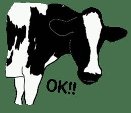 The cows sticker #1074440
