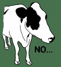 The cows sticker #1074441