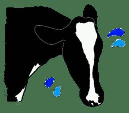 The cows sticker #1074443