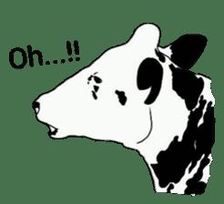The cows sticker #1074447