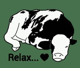 The cows sticker #1074452