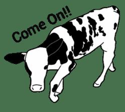 The cows sticker #1074453