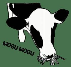 The cows sticker #1074459