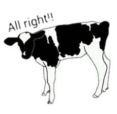 The cows sticker #1074461