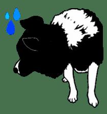 The cows sticker #1074464