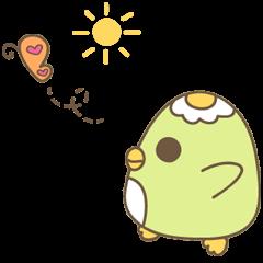 Sunny's Daily Life