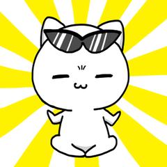 necomaru is a cat everyday