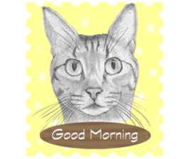 My cat Tama's stickers [For English] sticker #1078426