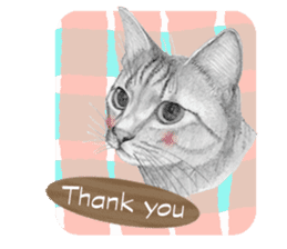 My cat Tama's stickers [For English] sticker #1078428