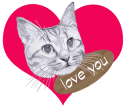 My cat Tama's stickers [For English] sticker #1078430