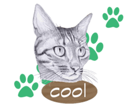 My cat Tama's stickers [For English] sticker #1078431