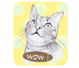 My cat Tama's stickers [For English] sticker #1078432
