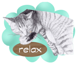 My cat Tama's stickers [For English] sticker #1078434
