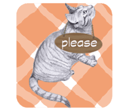 My cat Tama's stickers [For English] sticker #1078436