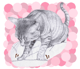 My cat Tama's stickers [For English] sticker #1078439