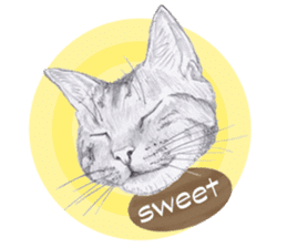 My cat Tama's stickers [For English] sticker #1078440