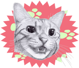 My cat Tama's stickers [For English] sticker #1078443