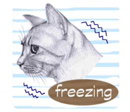 My cat Tama's stickers [For English] sticker #1078445