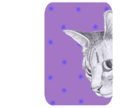 My cat Tama's stickers [For English] sticker #1078449