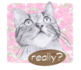 My cat Tama's stickers [For English] sticker #1078457