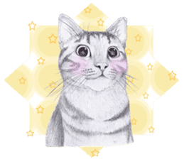 My cat Tama's stickers [For English] sticker #1078459