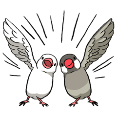 Java Sparrows Sticker