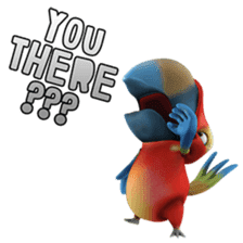 Zeezee, the funny parrot sticker #1089025