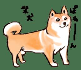 Healing dogs from fairy tale sticker #1092576