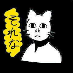 Straight face cat