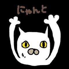 Muhu white cat