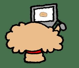 Toy poodle sticker #1103571
