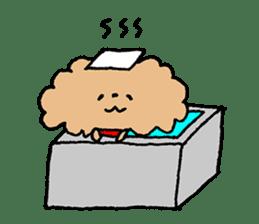 Toy poodle sticker #1103578