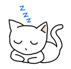 Life of cats sticker #1109067