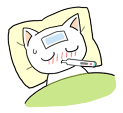 Life of cats sticker #1109091