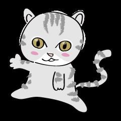 """cat """"tiger"""""""