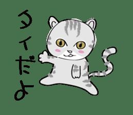 "cat ""tiger"" sticker #1109226"
